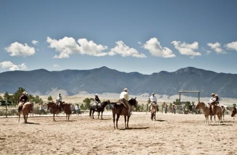DVD: Buck – Der wahre Pferdeflüsterer