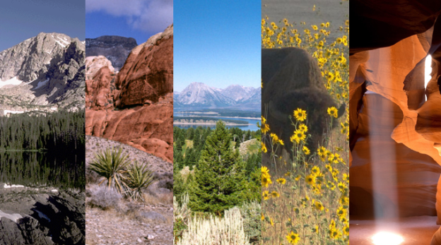 Natural Beauty  – Paesaggi da sogno