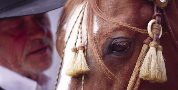 Mythos Cowboy
