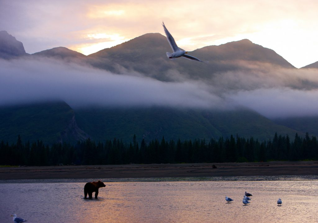 Chris McLennan/Travel Alaska